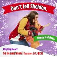 big bang theory amy sheldon noel
