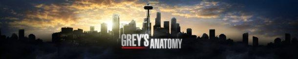 Grey's Anatomy Dr Grey Leçons d'anatomie saison 11